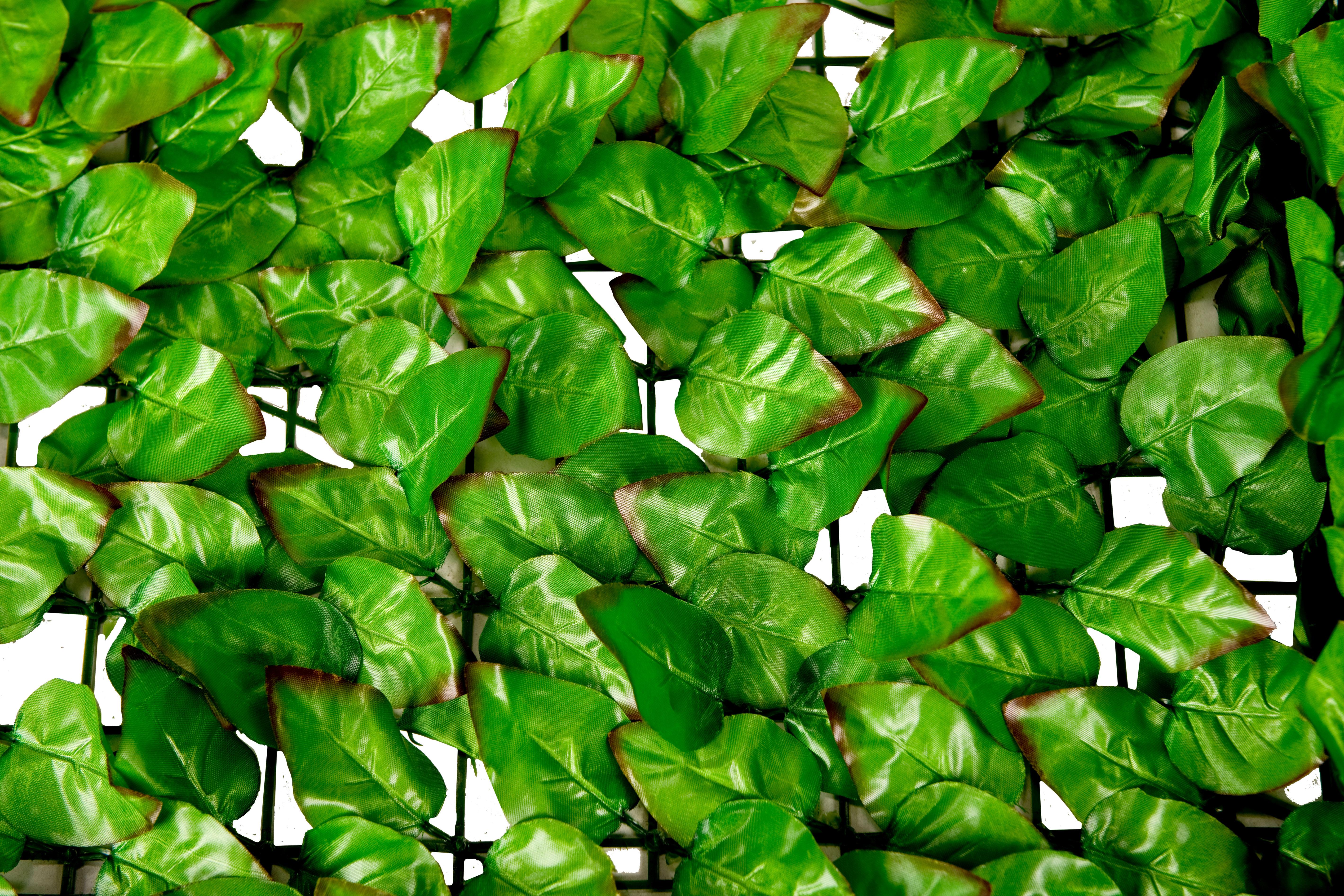 Osłona balkonowa jasne liście
